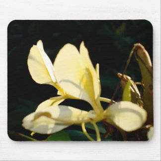 Yellow Ginger Mouse Pad
