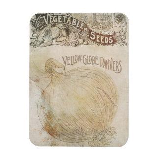 Yellow Globe Danvers Vegetable Seeds Vintage Rectangular Photo Magnet