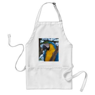 Yellow green and blue tropical Macaw Standard Apron