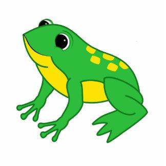 Yellow & Green Frog Photo Sculpture Magnet