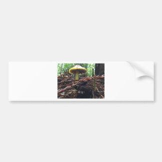 Yellow Hat Mushroom Bumper Sticker