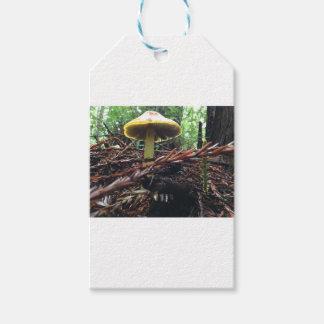 Yellow Hat Mushroom Gift Tags