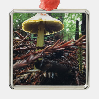 Yellow Hat Mushroom Silver-Colored Square Ornament