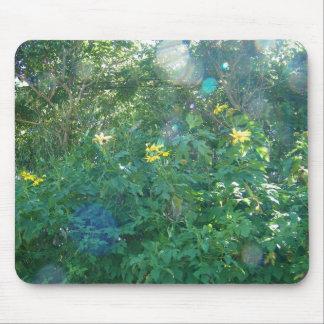 Yellow Hawaiian Wildflowers from Kauai Hawaii Mouse Pad