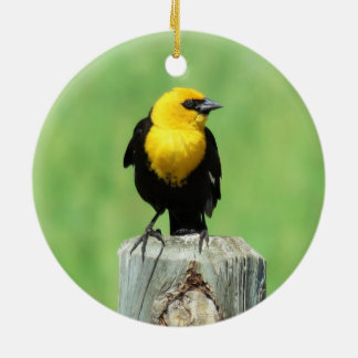 Yellow-headed blackbird round ceramic ornament