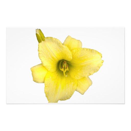 Yellow Hibiscus Flower Customized Stationery