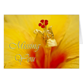Yellow Hibiscus Miss You Greeting Cards