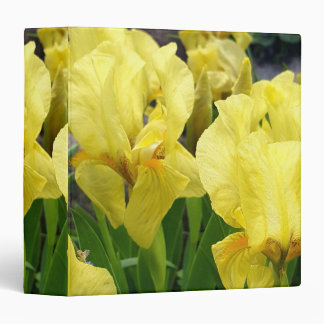 Yellow Iris flowers Binders