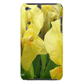 Yellow Iris flowers iPod Case-Mate Case