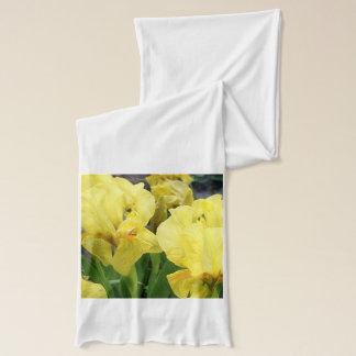 Yellow Iris flowers Scarf