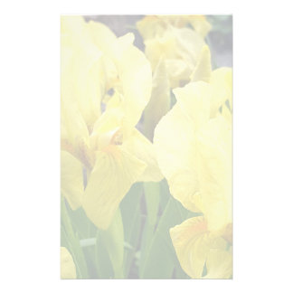 Yellow Iris flowers Stationery