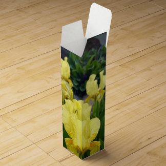 Yellow Iris flowers Wine Box