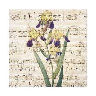 yellow iris music canvas print