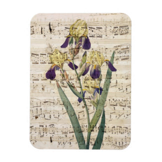 yellow iris music magnet