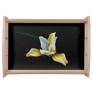 Yellow iris serving tray