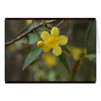 Yellow Jasmine Card