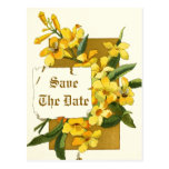 Yellow jasmine flowers wedding Save the Date Postcards