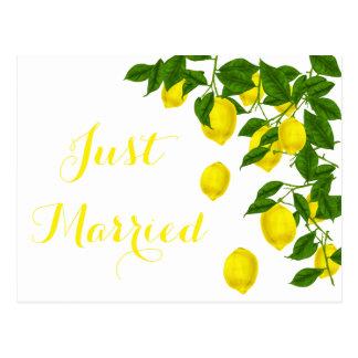 Yellow Just Married Lemon Green Wedding Citrus Postcard