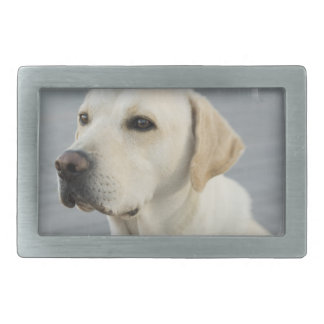 Yellow Lab Buckle Rectangular Belt Buckles