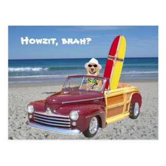 Yellow Lab Driving Woodie Postcard