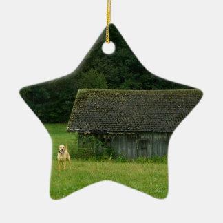 Yellow Lab Farmer Ceramic Star Ornament