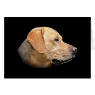 Yellow Lab Labrador Retriever Blank Card
