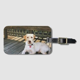 Yellow Lab luggage tag with business card slot