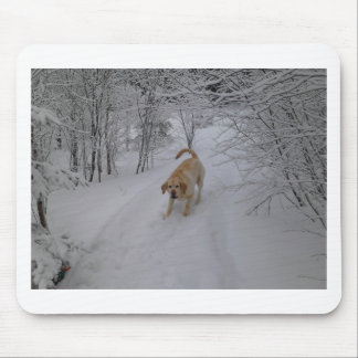 Yellow Lab Playing in Fresh Winter Snow Mouse Pad