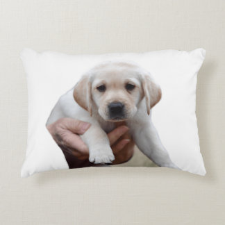 Yellow Lab Puppy Being Held By a Friend Accent Pillow