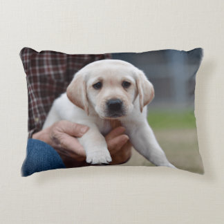 Yellow Lab Puppy Being Held By a Friend Decorative Pillow