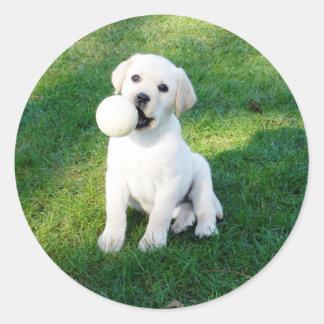 Yellow Lab Puppy Classic Round Sticker