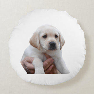 Yellow Lab Puppy In My Arms Round Pillow