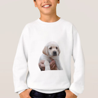 Yellow Lab Puppy In My Arms Sweatshirt