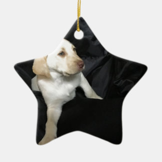 Yellow lab puppy Sadie Ceramic Star Ornament