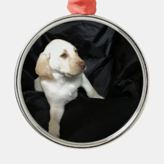 Yellow lab puppy Sadie Silver-Colored Round Ornament