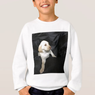 Yellow lab puppy Sadie Sweatshirt