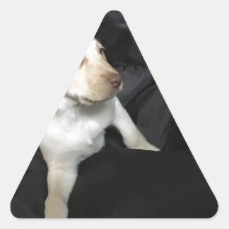 Yellow lab puppy Sadie Triangle Sticker