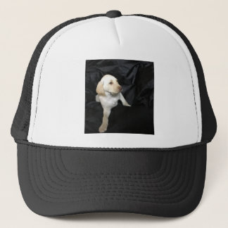 Yellow lab puppy Sadie Trucker Hat