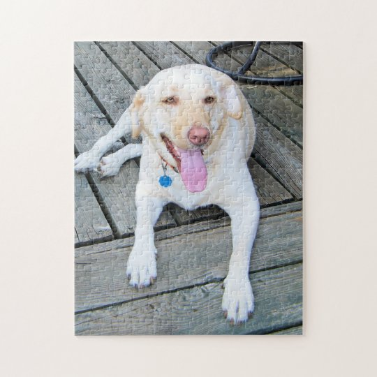 Yellow Labrador Puzzle