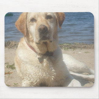 Yellow Labrador Retriever Mouse Pad