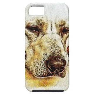 Yellow Labrador Retriever on Door iPhone 5 Case