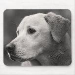 Yellow Labrador Retriever Puppy Dog Mousepad
