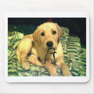 yellow labrador retriever puppy mouse pad