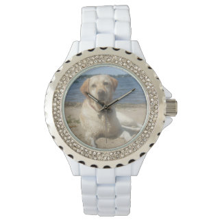 Yellow Labrador Retriever Watches