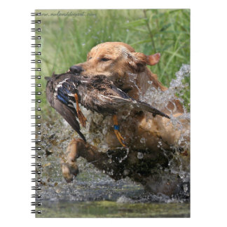 Yellow Labrador Retriever with duck Spiral Notebook
