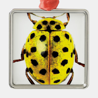 yellow ladybird Silver-Colored square ornament