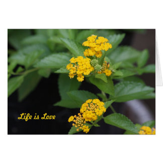 Yellow Lantana Life is Love Greeting Card