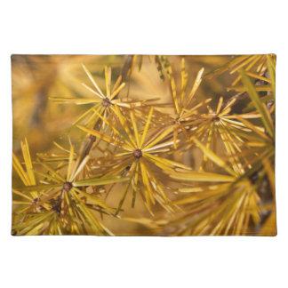 Yellow larch needles (Larix decidua) Placemat
