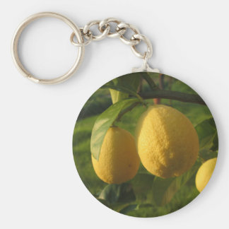 Yellow lemons growing on the tree at sunset keychain