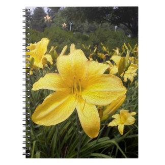 Yellow Lilies Fine Art Spiral Notebook